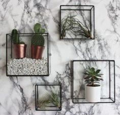 Der Pappus Square Box-Wandhalterung können gefüllt werden mit Luft Pflanzen, als ein einfaches Wasser und Blume-Feature verwendet oder Erstellen eigener qm Wintergarten oder Kakteen Terrarium auf Ihrer Wand hängen! Gelderner Pappus kommt in 4 Ausf…  – michellev837